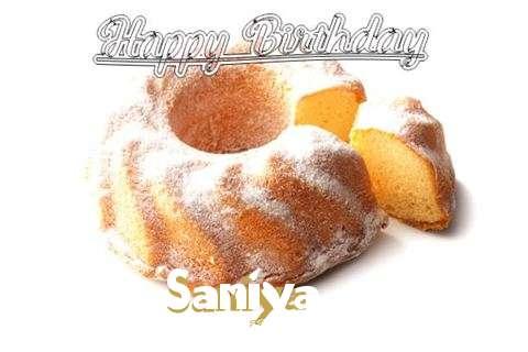 Happy Birthday to You Saniya