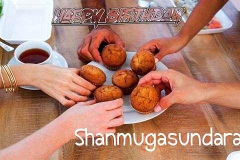 Happy Birthday Wishes for Shanmugasundaram