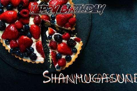 Shanmugasundari Birthday Celebration