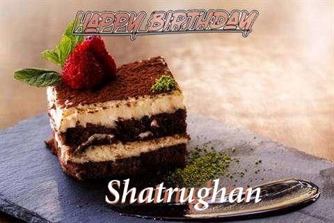 Shatrughan Cakes
