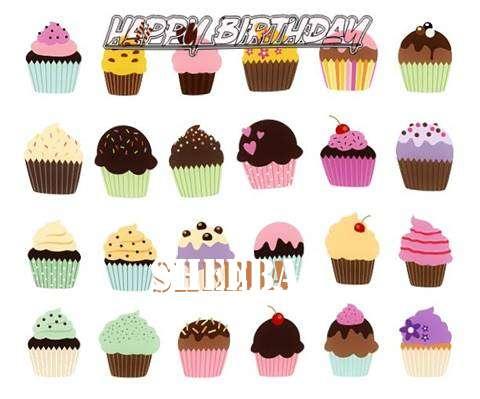Happy Birthday Wishes for Sheeba