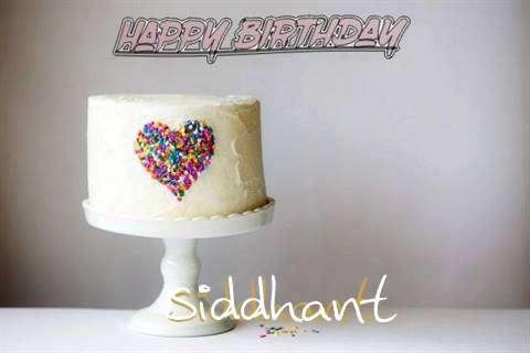 Siddhant Cakes