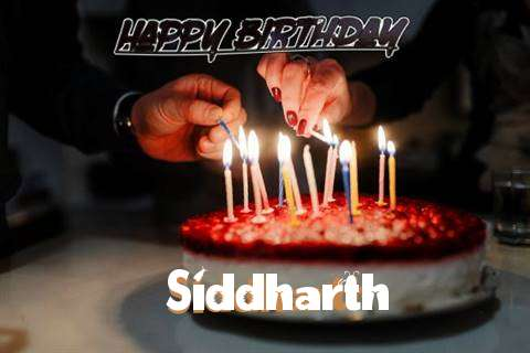 Siddharth Cakes