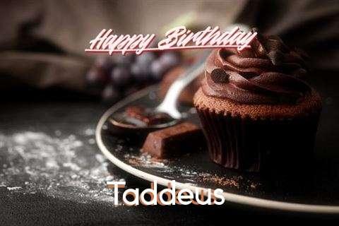 Happy Birthday Wishes for Taddeus