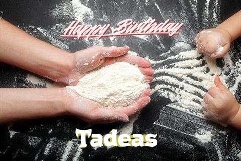 Tadeas Cakes