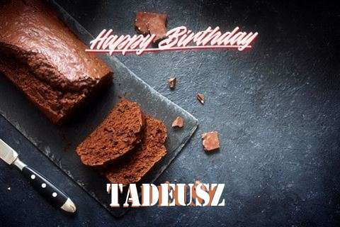 Tadeusz Cakes