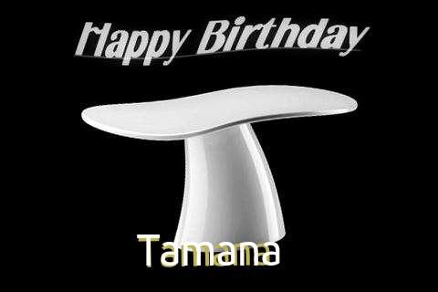 Tamana Birthday Celebration