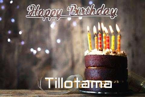 Tillotama Cakes