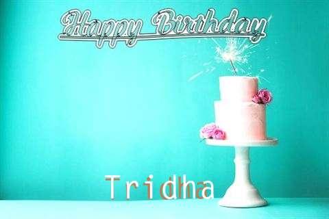 Wish Tridha