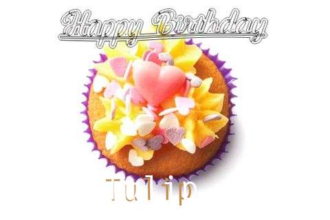 Happy Birthday Tulip Cake Image