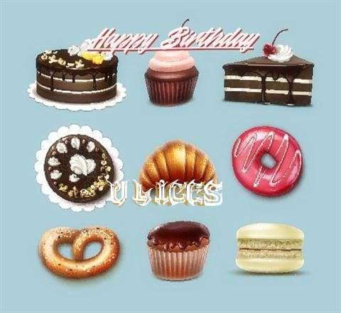 Ulices Birthday Celebration