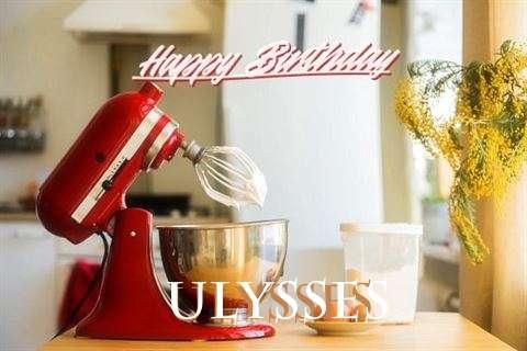 Ulysses Cakes