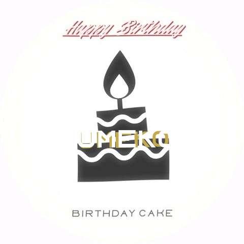 Umeko Cakes