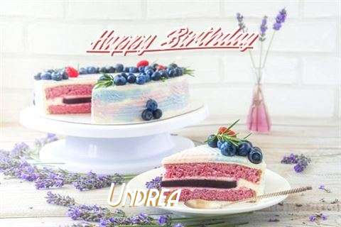 Undrea Cakes