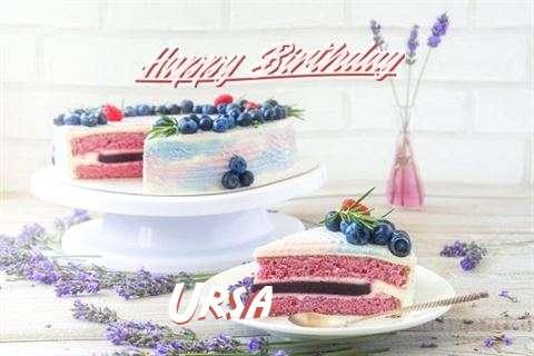 Happy Birthday to You Ursa