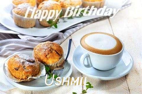 Ushmil Cakes