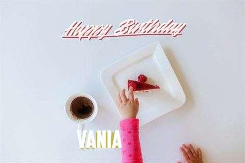 Vania Cakes