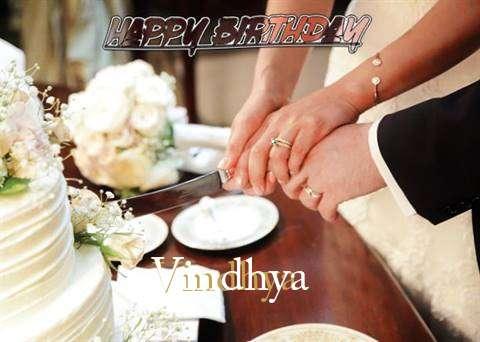 Vindhya Cakes