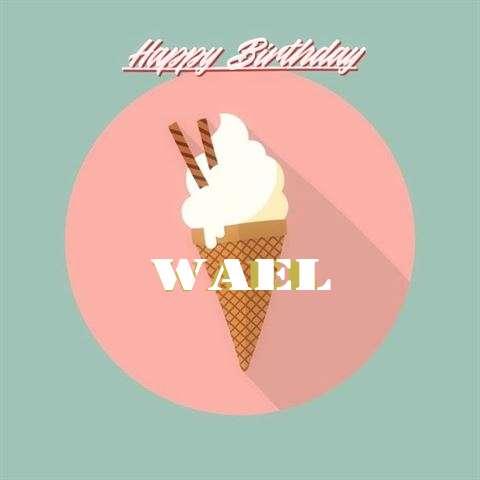 Wael Birthday Celebration