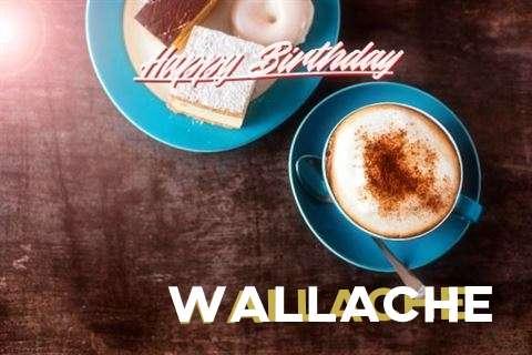Happy Birthday to You Wallache