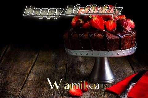 Wamika Birthday Celebration