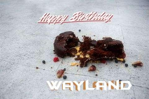 Happy Birthday Wayland