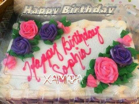 Xamira Cakes