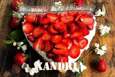 Xandria Cakes