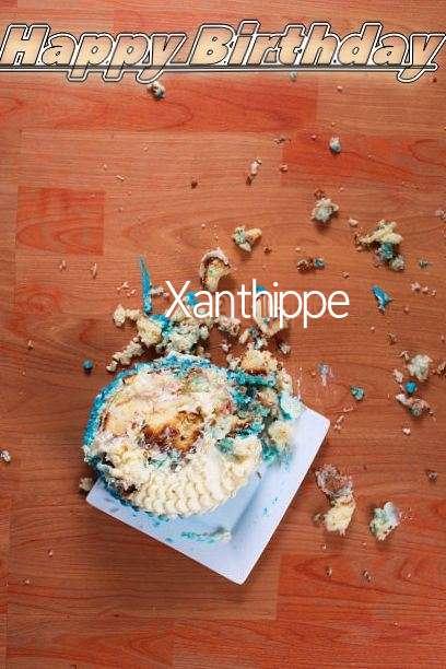 Xanthippe Cakes