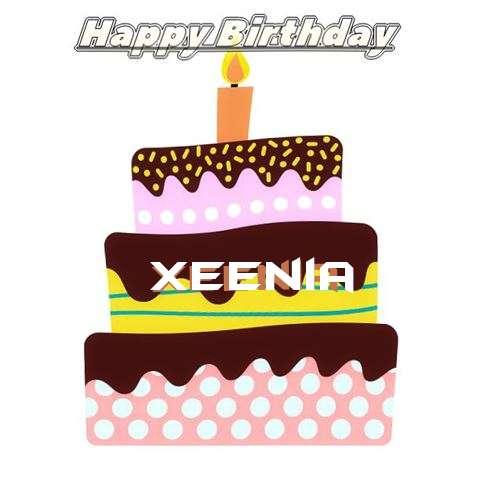 Xeenia Birthday Celebration