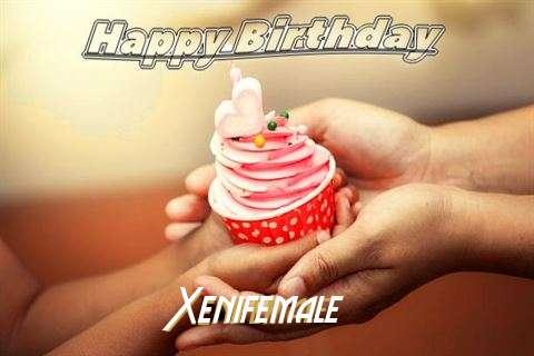 Happy Birthday to You Xenifemale