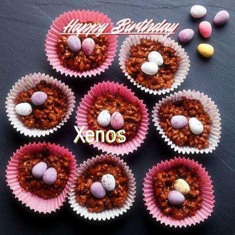 Xenos Birthday Celebration