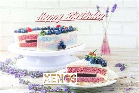 Xenos Cakes