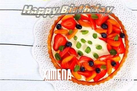 Ximena Birthday Celebration