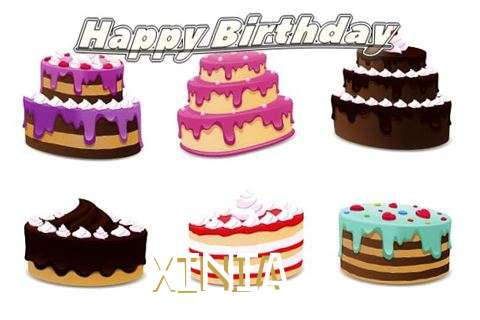 Xinia Cakes