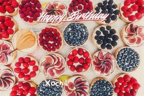 Happy Birthday Xochil Cake Image