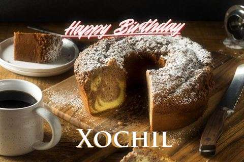 Xochil Cakes
