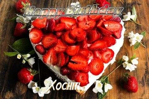 Xochitl Cakes