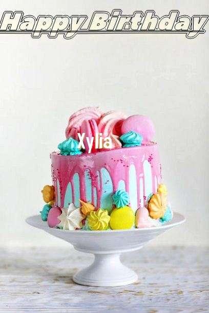 Xylia Birthday Celebration