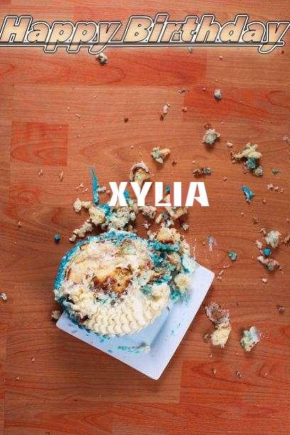 Xylia Cakes