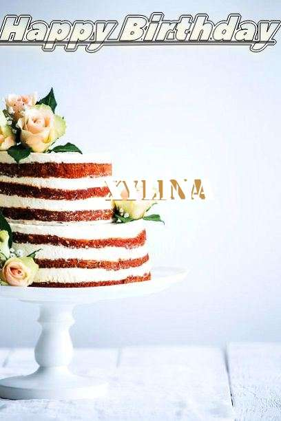 Happy Birthday Xylina Cake Image