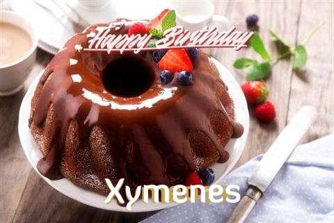 Happy Birthday Wishes for Xymenes