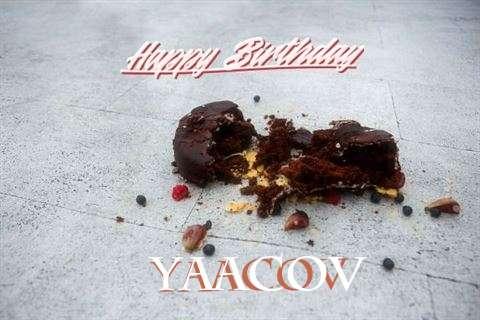 Yaacov Birthday Celebration