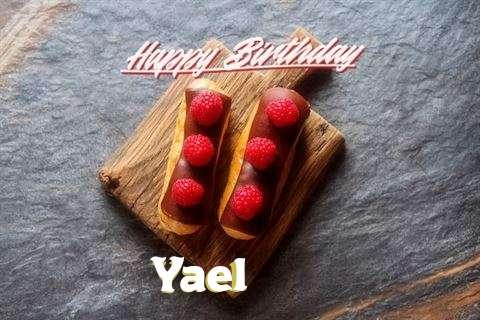 Yael Cakes