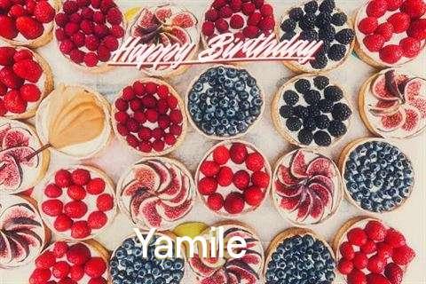 Happy Birthday Yamile Cake Image