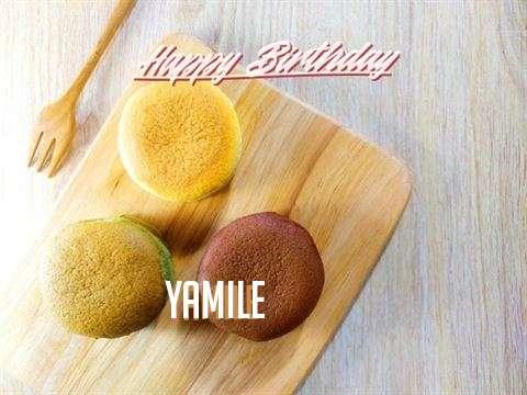 Yamile Birthday Celebration