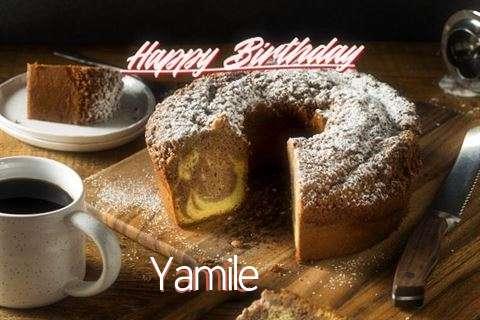 Yamile Cakes