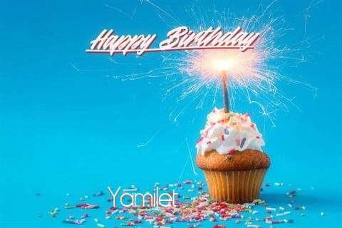 Happy Birthday Cake for Yamilet