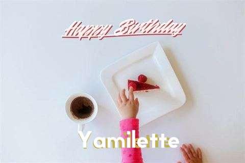 Happy Birthday Yamilette Cake Image