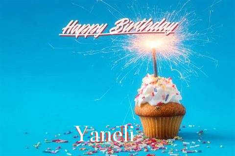 Happy Birthday Cake for Yaneli